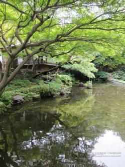 Japan Exchange 2013 - Tokyo with Bon Bon's photos 098