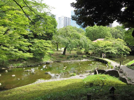 Japan Exchange 2013 - Tokyo with Bon Bon's photos 117