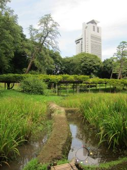 Japan Exchange 2013 - Tokyo with Bon Bon's photos 227