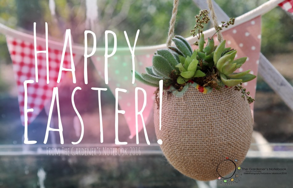 Easter gift ideas quick and easy the gardeners notebook this year i wanted to try something a bit creative and different than the usual easter gifts i came up with two quick and easy gift ideas negle Images