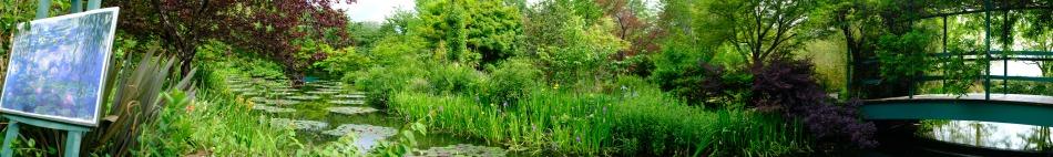 Kitagawa Village Monet's Garden Marmottan, kochi, swepea blue, annual flowers, gardens (12)