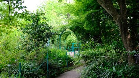 Kitagawa Village Monet's Garden Marmottan, kochi, swepea blue, annual flowers, gardens (27)