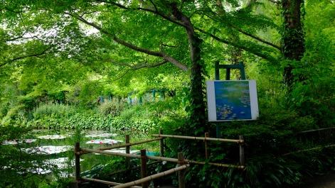 Kitagawa Village Monet's Garden Marmottan, kochi, swepea blue, annual flowers, gardens (31)