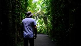 Kochi Japan Botaincal Gardens Tomitaro Makino travel (381)