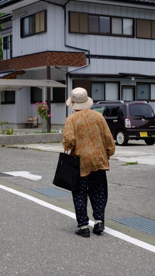 Kochi, japan, flower container, streets, street signs, rural japan, wind farm (5)