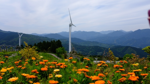 Kochi, japan, flower container, streets, street signs, rural japan, wind farm (7)