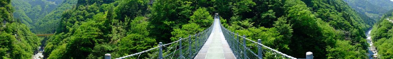 Kochi, Vine bridges, doll village , Japanese doll village, doll people japan (7)