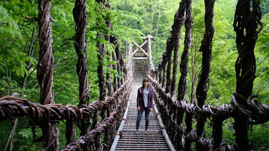 Kochi, Vine bridges, doll village , Japanese doll village, doll people japan (16)
