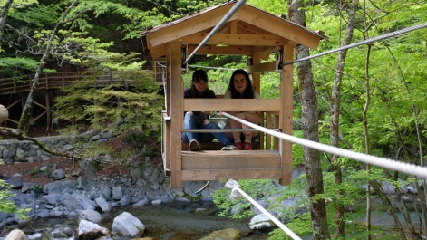 Kochi, Vine bridges, doll village , Japanese doll village, doll people japan (17)